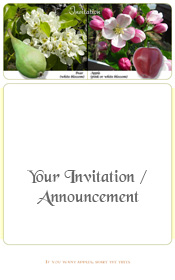 apple-pear-blossom-fruit-invitation