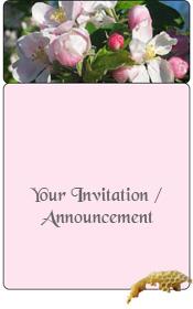general-invitation-spring-apple-blossom