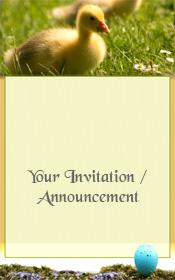 general-invitation-spring-duckling