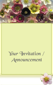 general-invitation-spring-hellebore-flowers