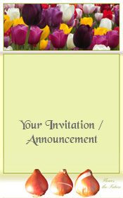general-invitation-spring-tulip-flowers
