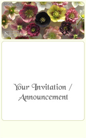 seasons-greetings-spring-helleburus-hybrids-water-bowl-invitation