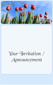 spring-red-tulips-blue-sky-holland-invitation