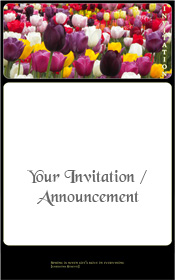 spring-tulips-flowering-colours-invitation