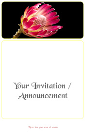 protea-wonders-of-nature-invitation