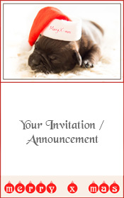 merry-christmas-invitation-xmas-dog-bulldog