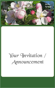 apple-blossom-orchard-spring-invitation