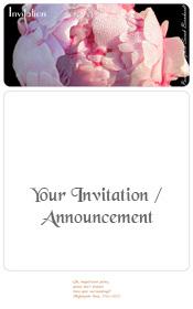 peony-paeonia-lactiflora-sarah-bernhardt-invitation