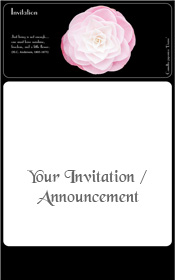 pink-camellia-flower-natural-beauty-invitation