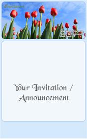 spring-red-tulips-blue-sky-holland-invitation