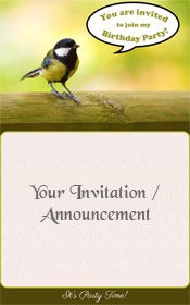 happy-birthday-invitation-little-birdy