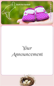 birth-new-baby-girl-stork-has-landed-announcement